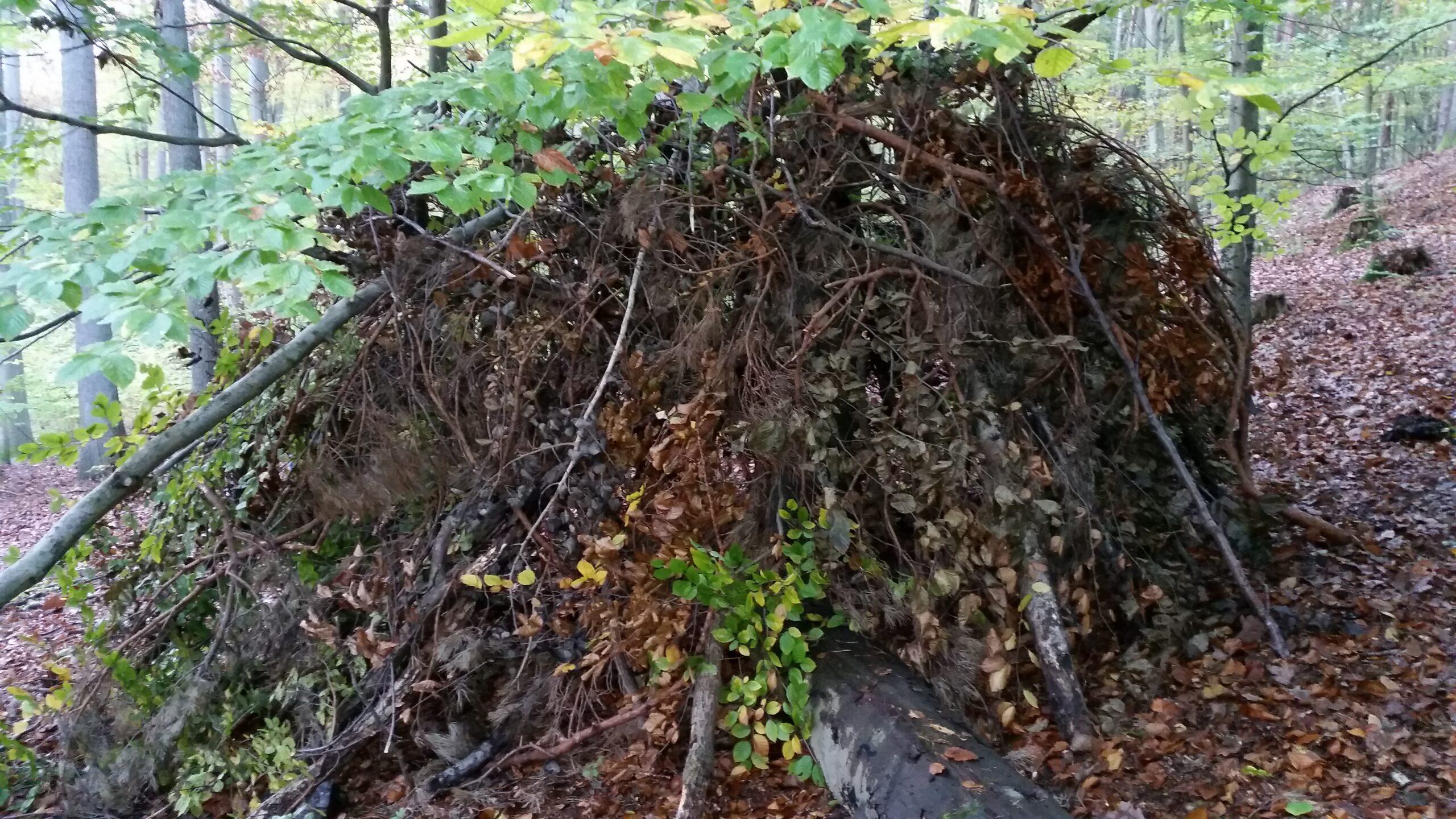 Eine eigene Abenteuerhütte