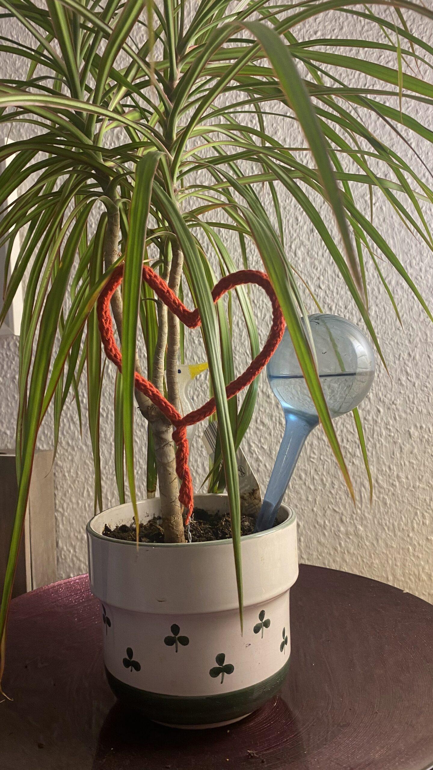 Strickliesel-Herz als Blumen-Einstecker