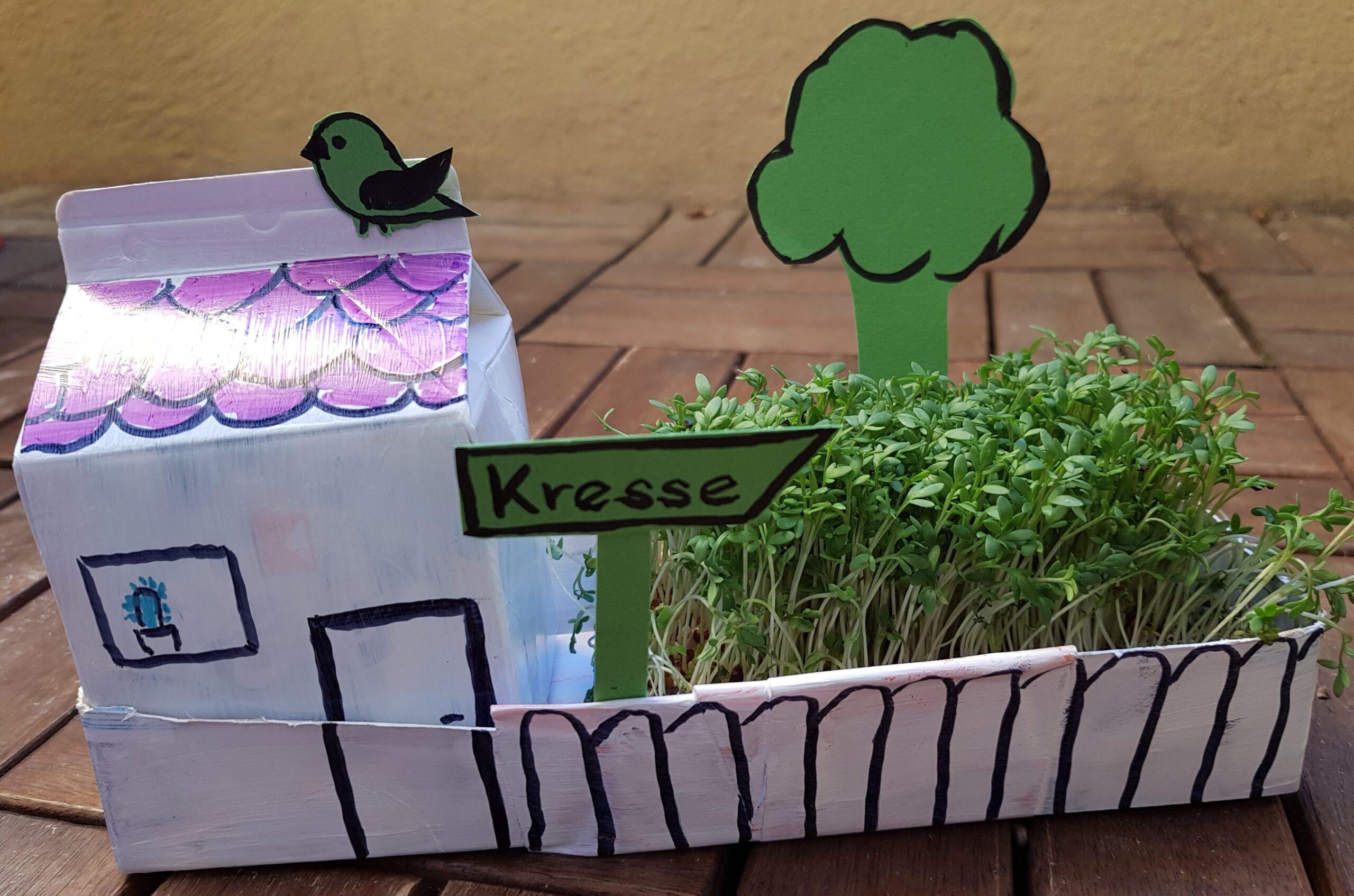Upcycling Kressegarten