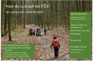 Read more about the article Freiwilliges ökologisches Jahr